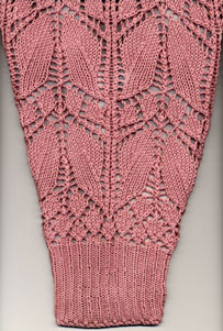 Viennese Lace Shrug sleeve